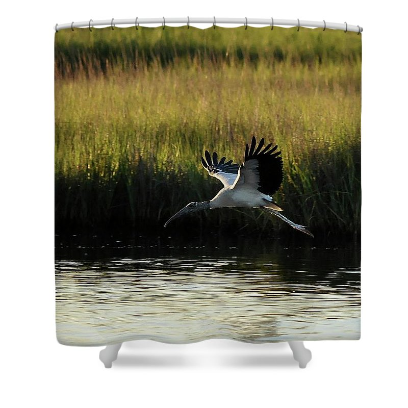 Wood Stork Shower Curtain featuring the photograph Wood Stork Winged Flight by Al Powell Photography USA