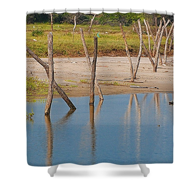 Wather Shower Curtain featuring the photograph Wood Walk by Galeria Trompiz