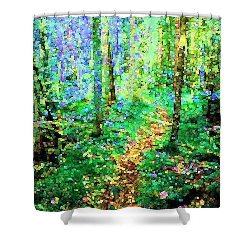 Nature Shower Curtain featuring the digital art Wooded Trail by Dave Martsolf