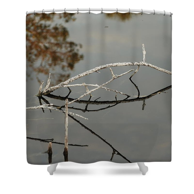 Pink Shower Curtain featuring the photograph Wooden Bridge In Color by Rob Hans