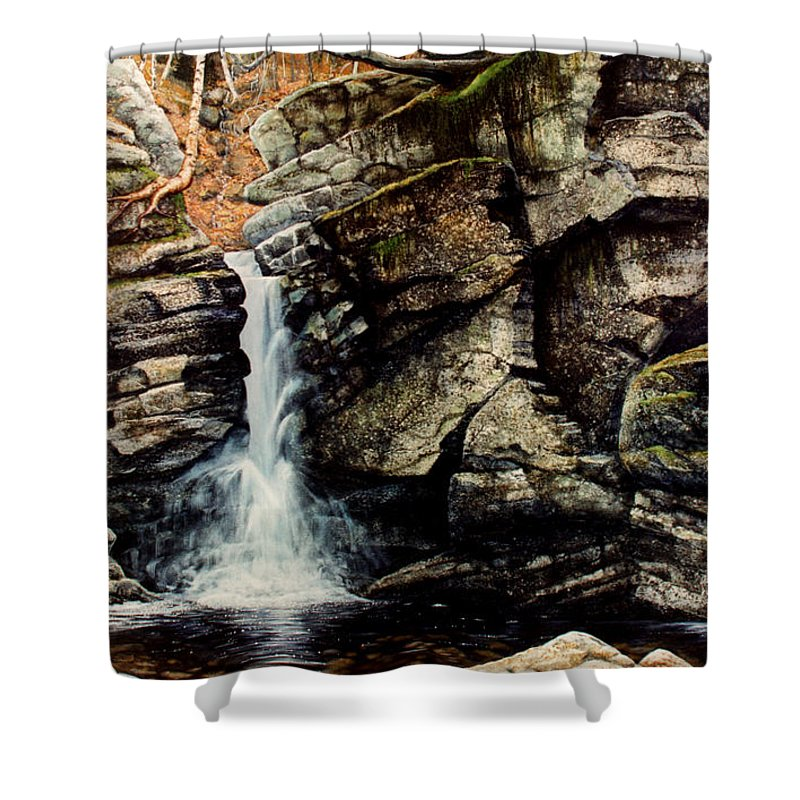 Waterfall Shower Curtain featuring the painting Woodland Falls by Frank Wilson