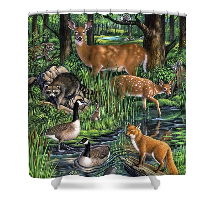 Bobcat Shower Curtains