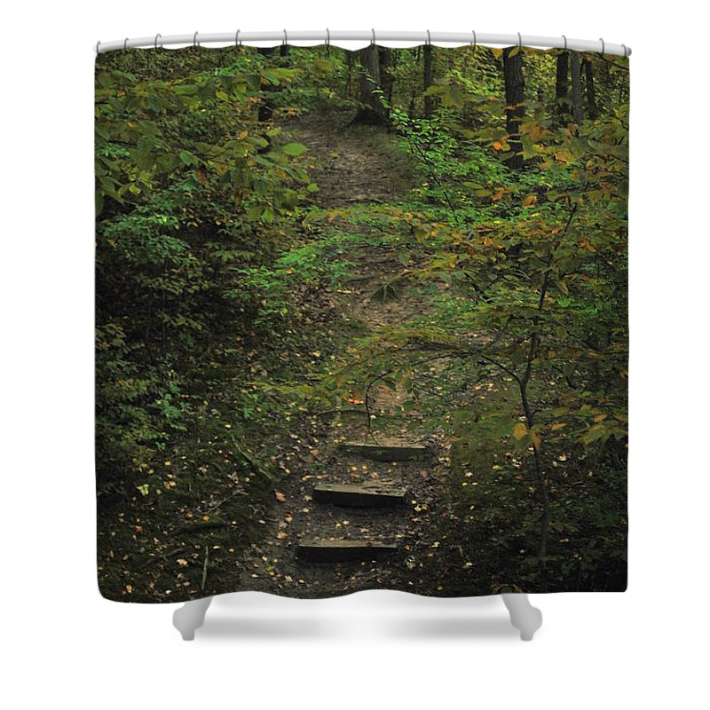 Wood Shower Curtain featuring the photograph Woodland Steps by Michelle Hastings
