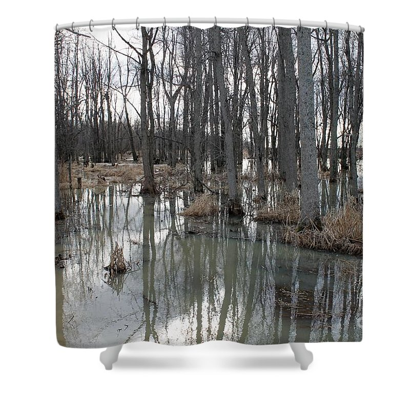 Woodland Stillness Shower Curtain featuring the photograph Woodland Stillness by Elizabeth PhotoClique