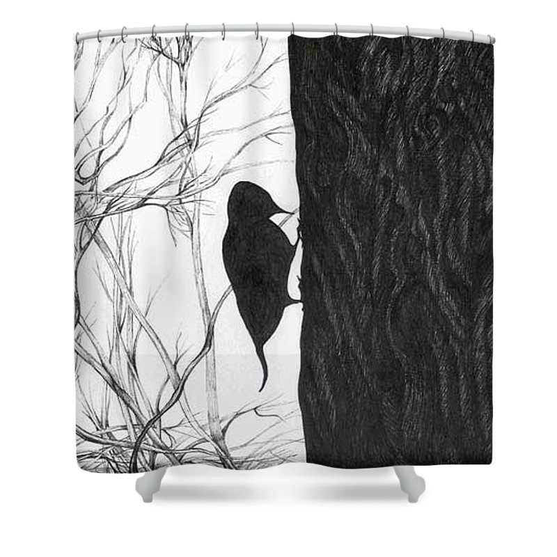 Pen And Ink Shower Curtain featuring the drawing Woodpecker by Anna Duyunova