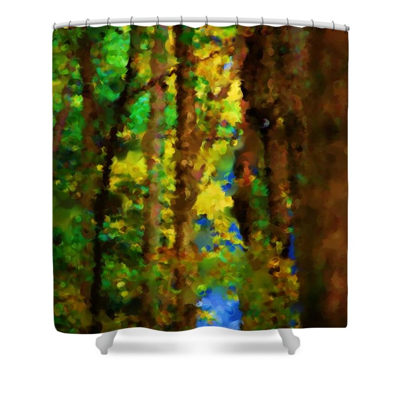 Digital Photograph Shower Curtain featuring the photograph Woods Approach To Lake by David Lane