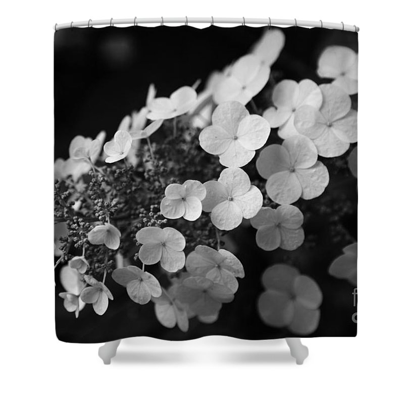 Hydrangea Shower Curtain featuring the photograph Working Together by Amanda Barcon