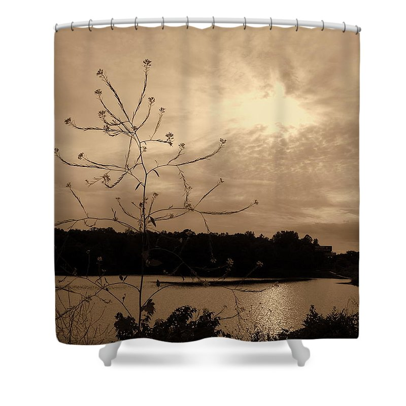 Worm Hole Shower Curtain featuring the photograph Worm Hole by Edward Smith