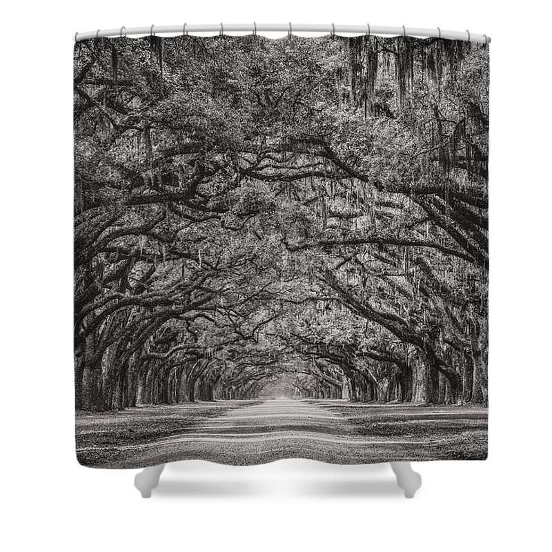 Oak Alley Shower Curtain featuring the photograph Wormsloe Plantation by Chilehead Photography