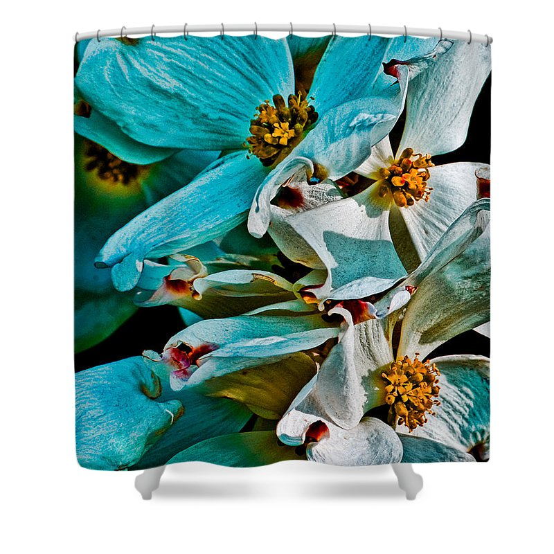 Floral Shower Curtain featuring the photograph Wrinkly Petals by Chris Lord