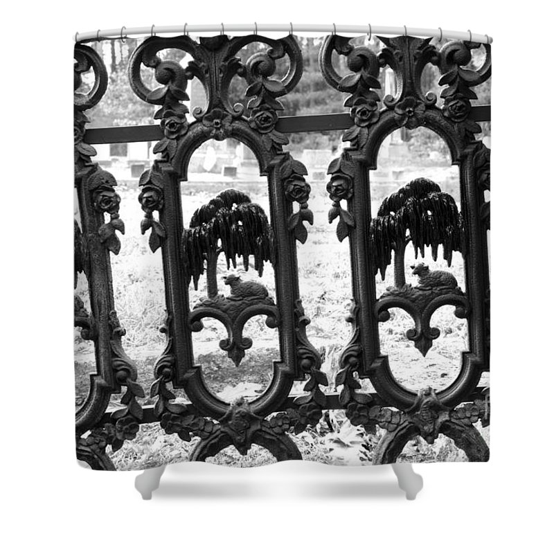 Gate Shower Curtain featuring the photograph Wrought Iron Gate -west Epping Nh Usa by Erin Paul Donovan