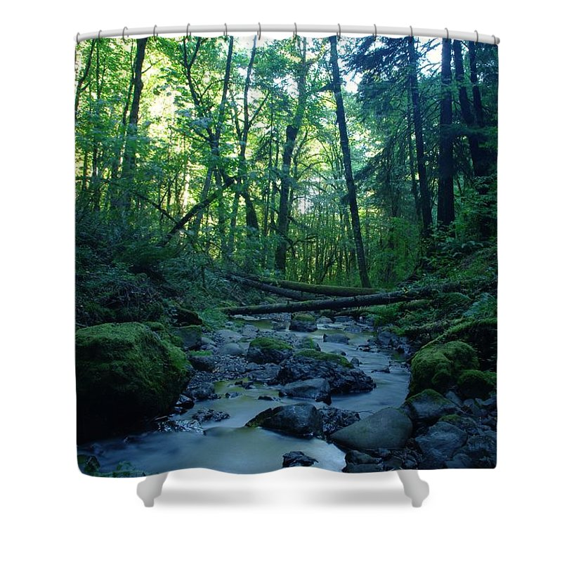 Water Shower Curtain featuring the photograph Wyeth Creek by Jeff Swan