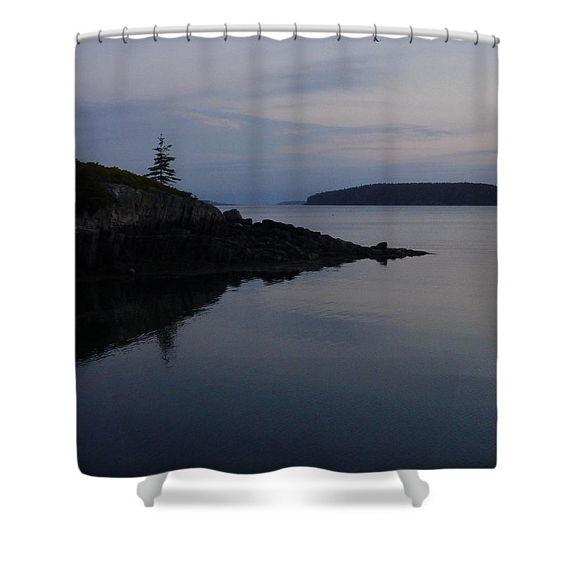 Shower Curtain featuring the photograph Xmas Tree by Kelly Mezzapelle