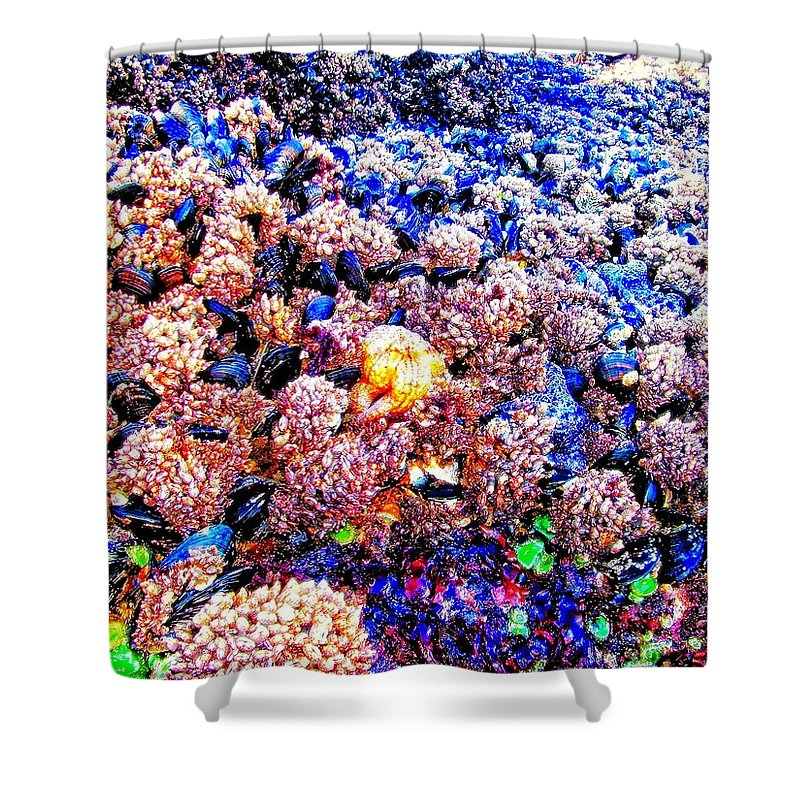 Yachats Shower Curtain featuring the photograph Yachats Oregon - Low Tide Treasures by Image Takers Photography LLC - Carol Haddon and Laura Morgan