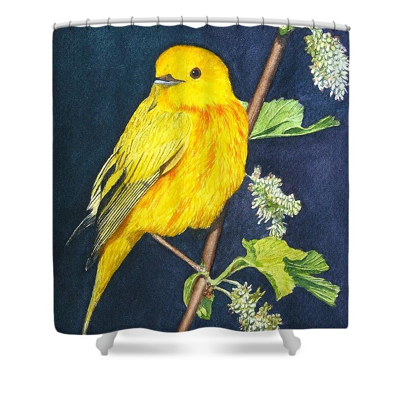 Bird Shower Curtain featuring the painting Yelllow Warbler by Sharon Farber