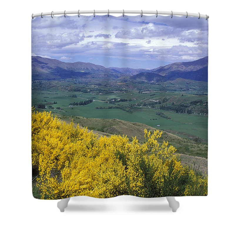 Wildflowers Shower Curtain featuring the photograph Yellow Broom Over Pasture In Dalefield by Rich Reid