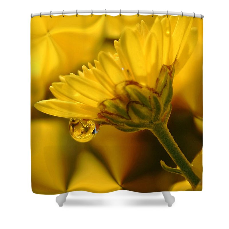 Flowers Shower Curtain featuring the photograph Yellow Drip by Linda Sannuti