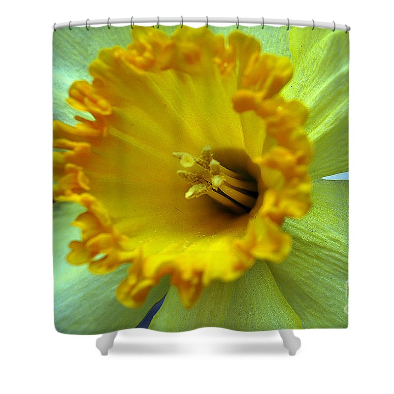 Clay Shower Curtain featuring the photograph Yellow Floral by Clayton Bruster