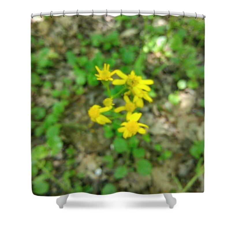 Yellow Shower Curtain featuring the photograph Yellow Flowers by Alisha Albin