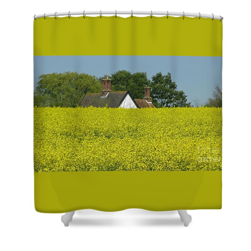 Landscape Shower Curtain featuring the photograph Yellow Gold by Ann Horn