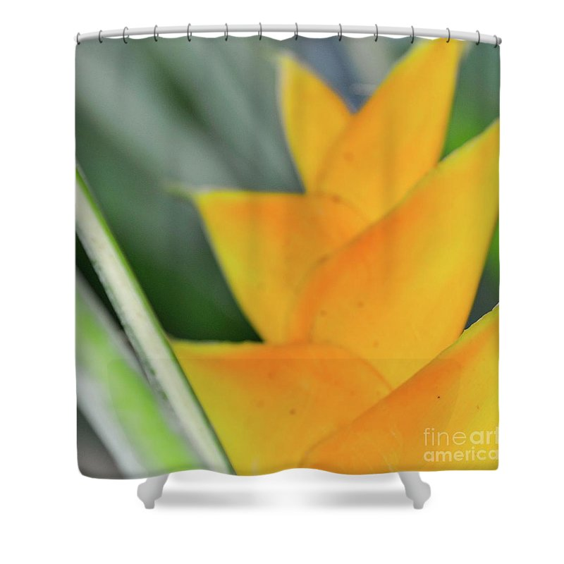 Yellow Shower Curtain featuring the photograph Yellow Heliconia - Hawaii Plants Flowers by D Davila