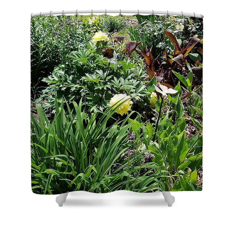 Shower Curtain featuring the photograph Yellow Peonia by Teresa Doran