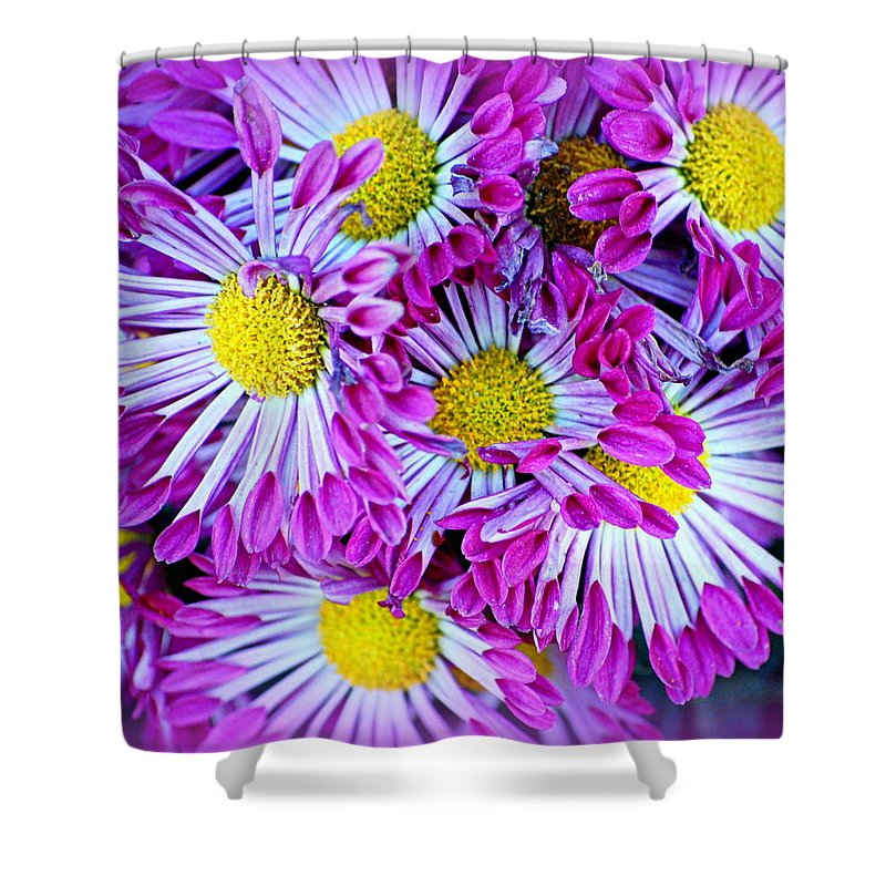 Flowers Shower Curtain featuring the photograph Yellow Purple And White by AJ Schibig