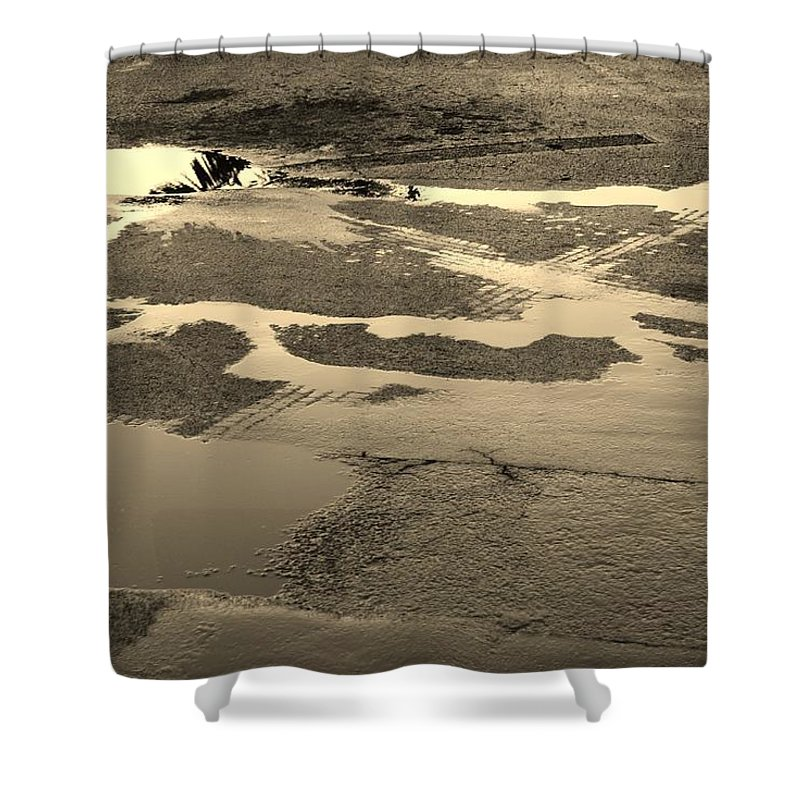 Water Shower Curtain featuring the photograph Yellow Streams In The Lot by Rob Hans