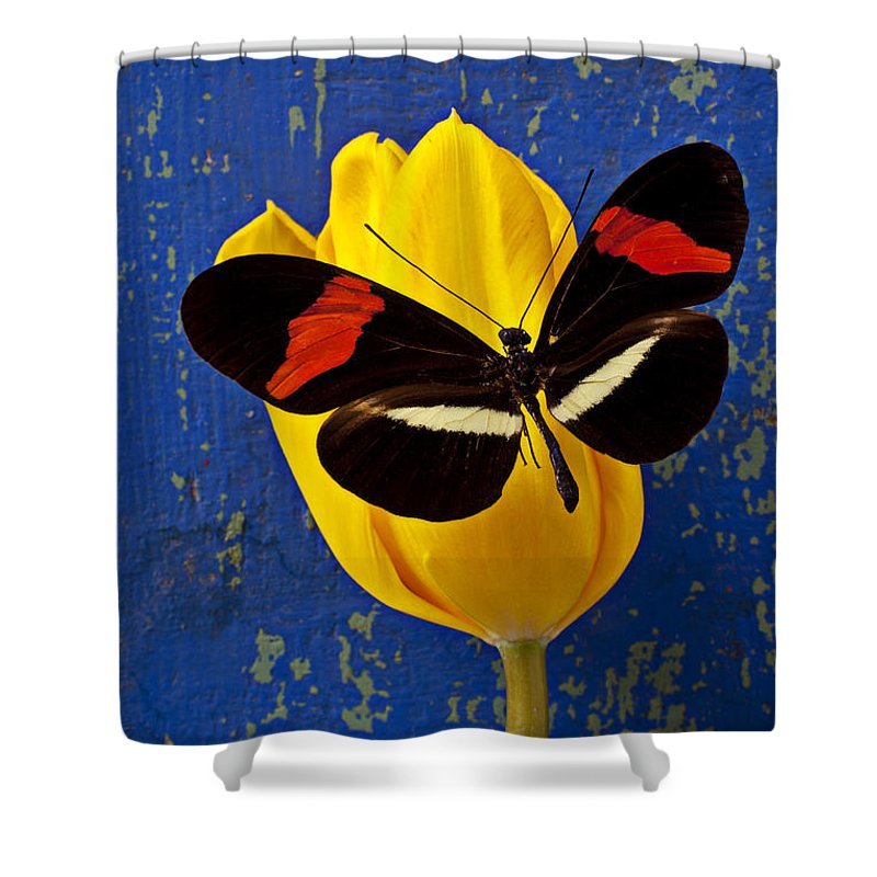 Yellow Shower Curtain Featuring The Photograph Tulip With Orange And Black Butterfly By Garry Gay