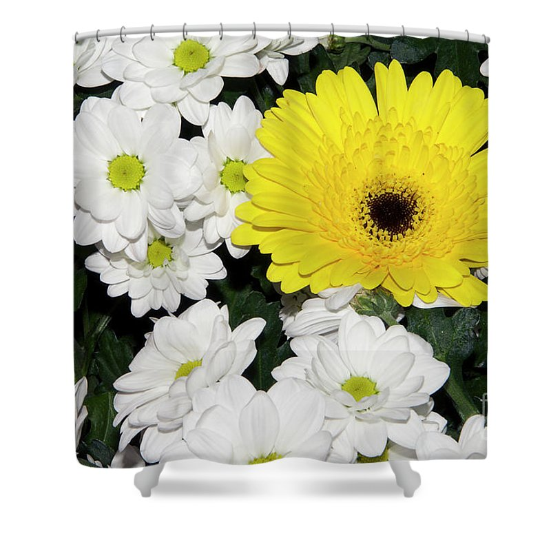 Flowers Shower Curtain featuring the photograph Yellow White Flowers by Elvira Ladocki