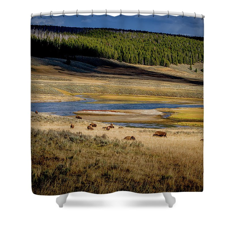 Yellowstone Shower Curtain featuring the photograph Yellowstone Landscape by Sergio Sandoval