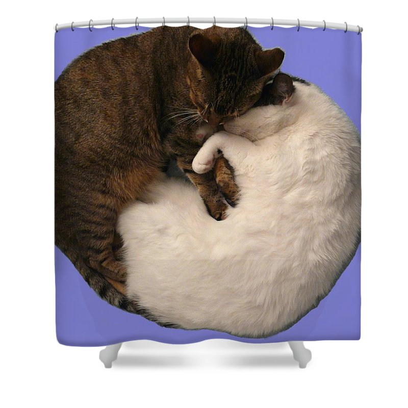 Yin Shower Curtain featuring the photograph Yin And Yang by Valerie Ornstein