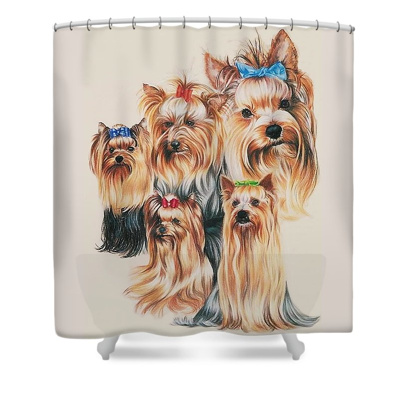 Purebred Shower Curtain featuring the drawing Yorkshire Terrier by Barbara Keith