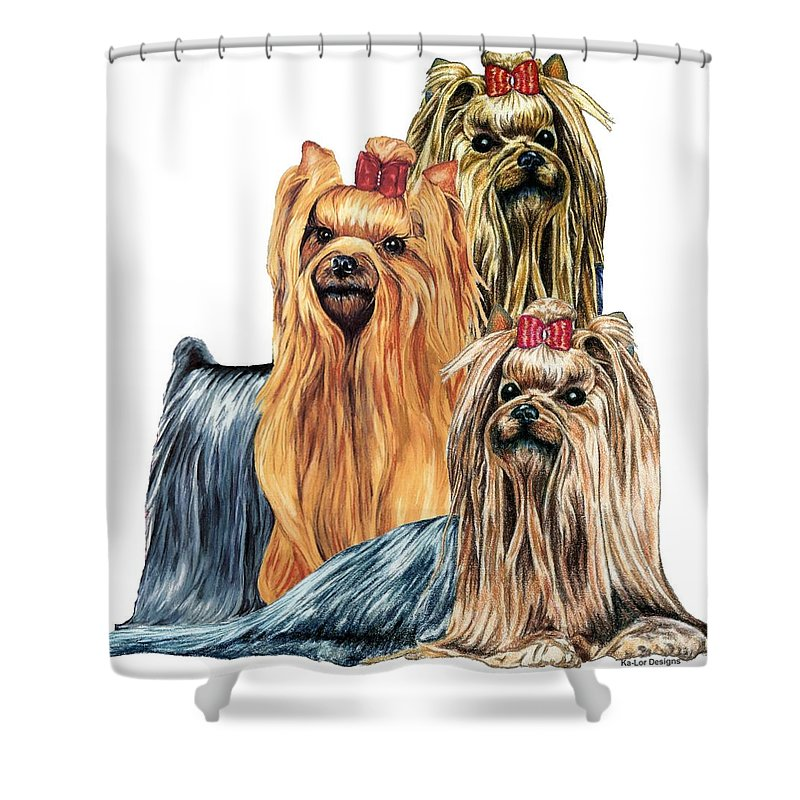 Yorkshire Terrier Shower Curtain featuring the drawing Yorkshire Terriers by Kathleen Sepulveda