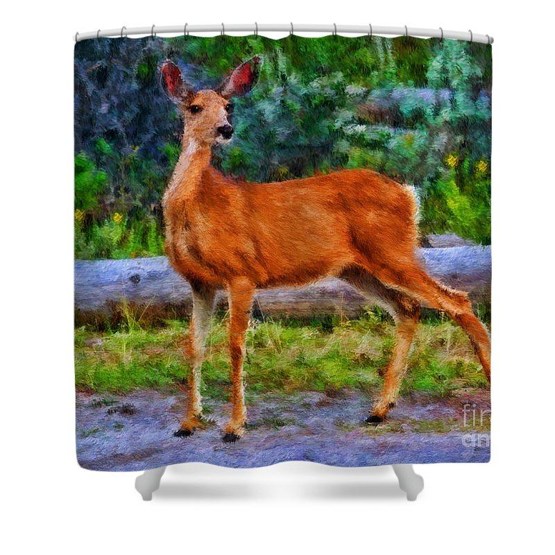 Doe Shower Curtain featuring the photograph Young Doe by Blake Richards