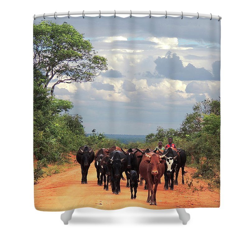 Shower Curtain featuring the photograph Young Herders, Zambia by Krin Van Tatenhove
