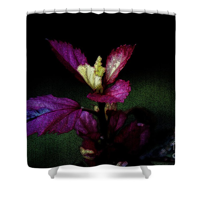 Flower Shower Curtain featuring the photograph Your Coat Of Many Colors by Linda Shafer