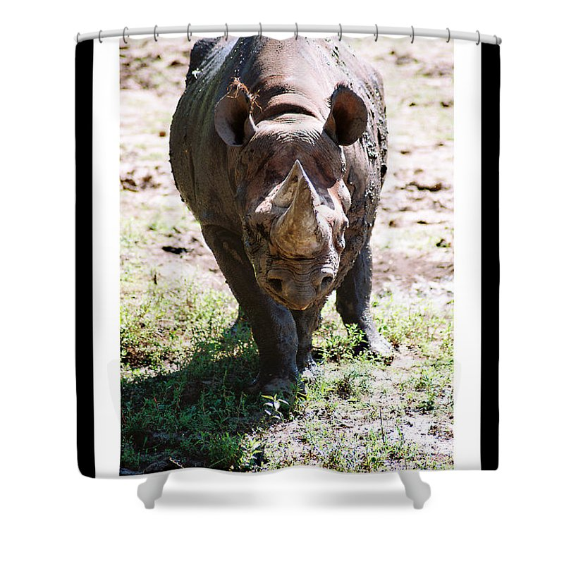 Rhino Shower Curtain featuring the photograph Your Point Is by Steve Karol