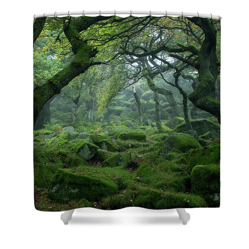 Tranquility Shower Curtain featuring the photograph Padley Gorge by Duncan Fawkes