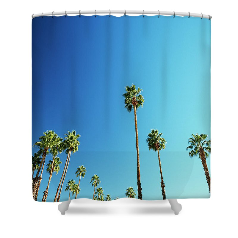 Clear Sky Shower Curtain featuring the photograph Palm Trees Against Blue Sky by Micha Pawlitzki