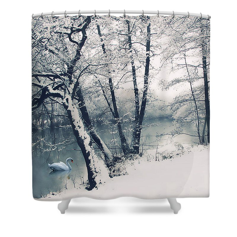 Landscape Shower Curtain featuring the photograph Snow Pond by Jessica Jenney