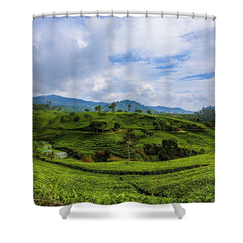 Nature Seekers Shower Curtains