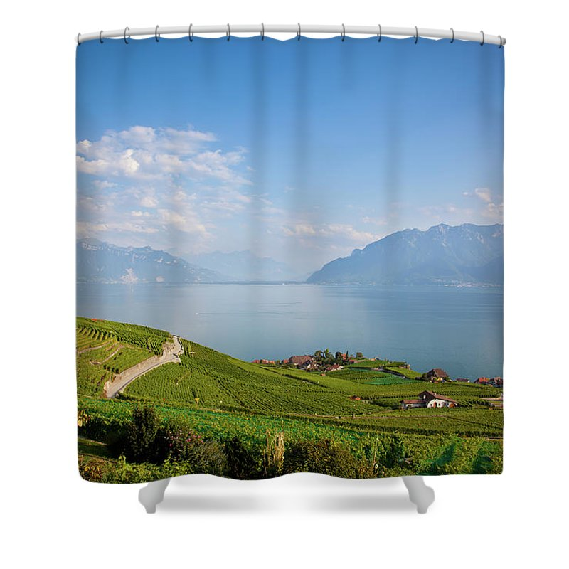 Alcohol Shower Curtain featuring the photograph Vineyards Around Lake Leman by Onfokus