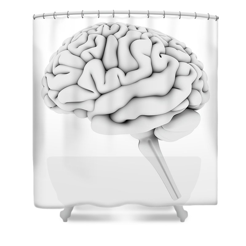 White Background Shower Curtain featuring the digital art Brain, Artwork by Pasieka