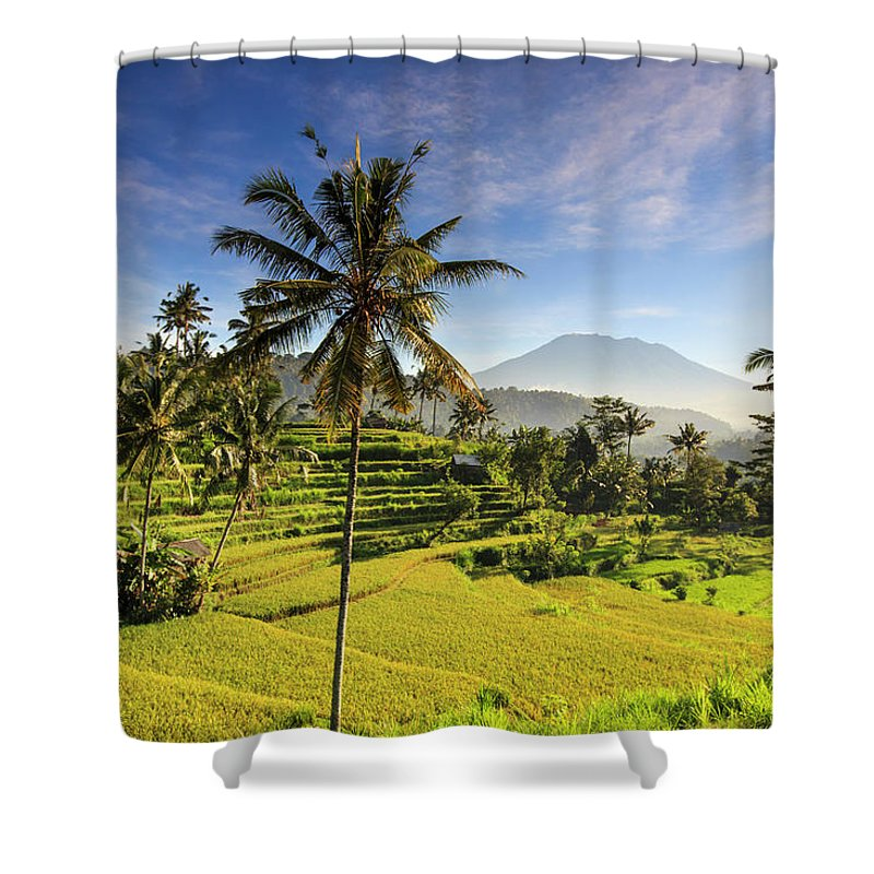 Tranquility Shower Curtain featuring the photograph Indonesia, Bali, Rice Fields And Agung by Michele Falzone