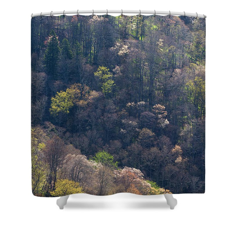 Scenics Shower Curtain featuring the photograph Early Spring, North Carolina by Jerry Whaley