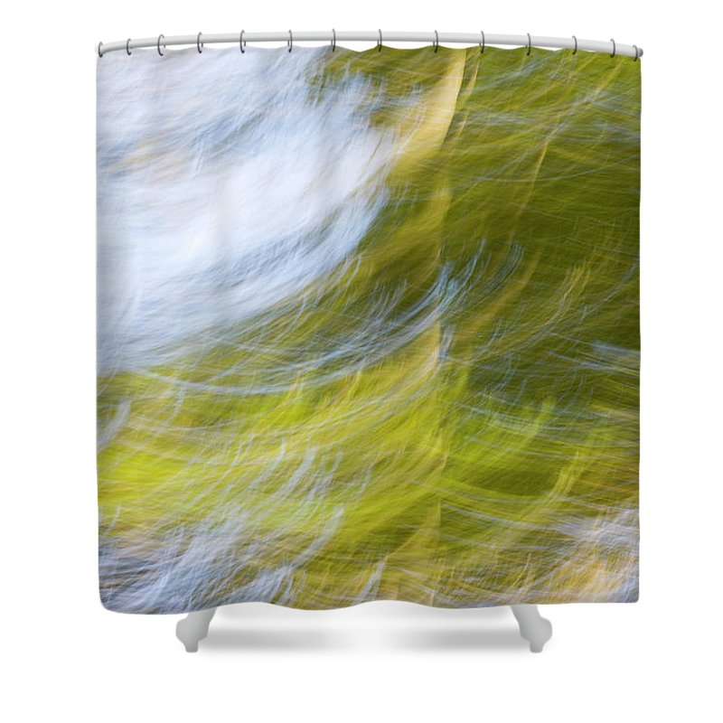 Full Frame Shower Curtain featuring the photograph Abstract Close Up Of Trees by Background Abstracts