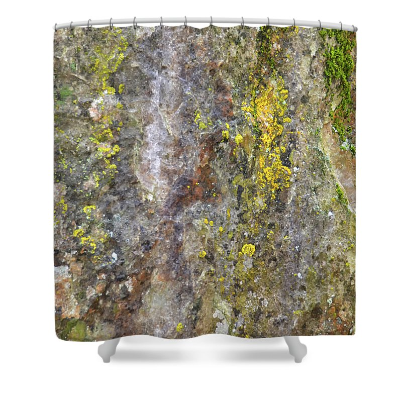 Nature Shower Curtain featuring the mixed media Along The Trail 3 by Angelina Tamez