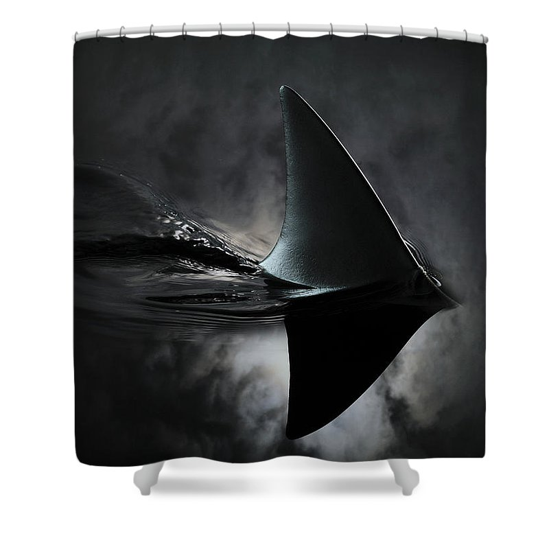 Risk Shower Curtain featuring the photograph An Image Of A Shark Fin Against Moon by Jonathan Knowles