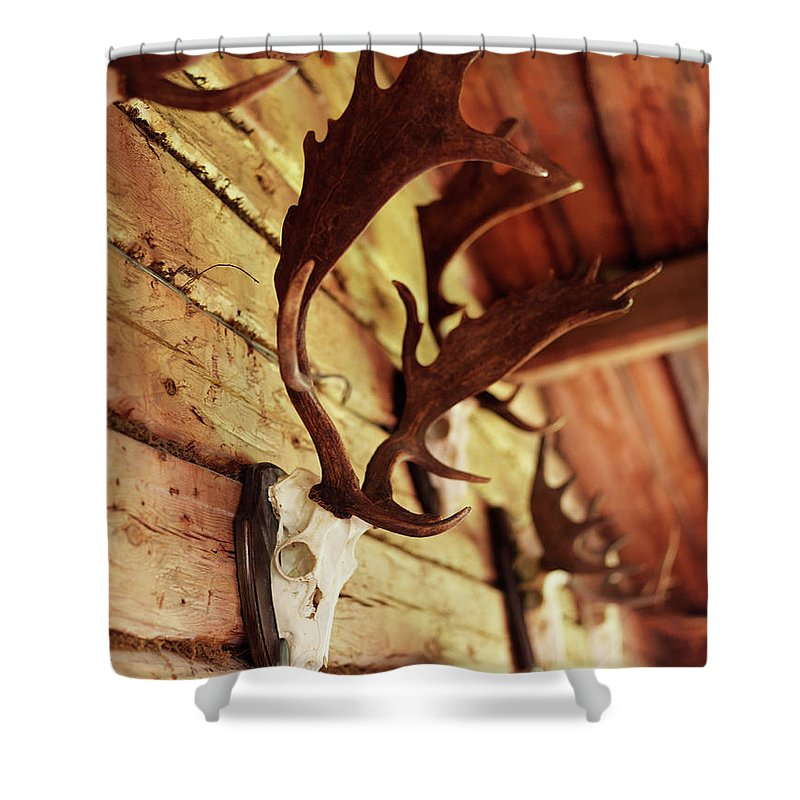 Horned Shower Curtain featuring the photograph Antler Collection On Wall by Granefelt, Lena